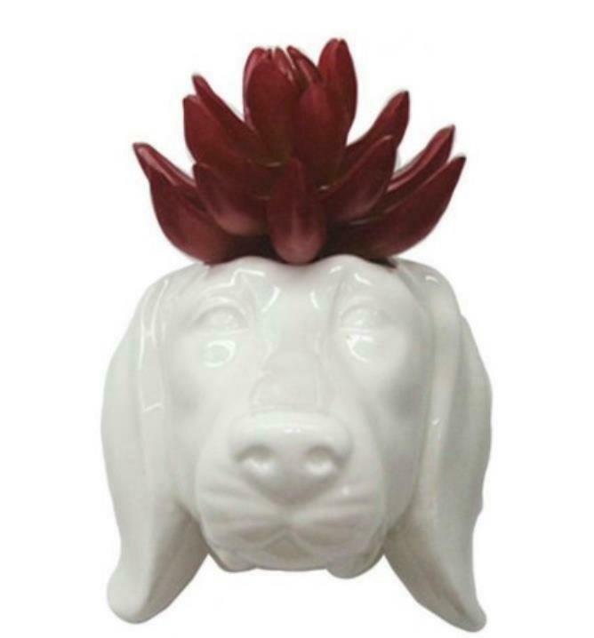 Dachshund Dog Head Ceramic Wall Planter