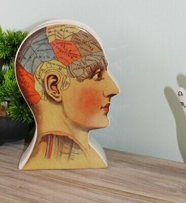 Ceramic Phrenology Head Vase