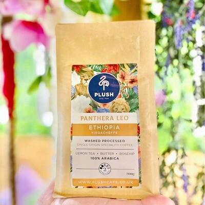 Panthera Leo - Ethiopia Yirgacheffe Coffee 200g