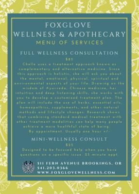 Wellness Consultation - Mini