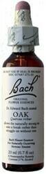 Oak Bach Flower Remedy 20 ml