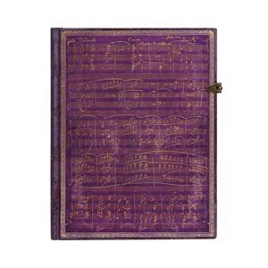Large Journals with one clasp by paperblanks