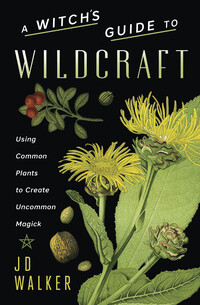 A Witch's Guide to Wildcraft