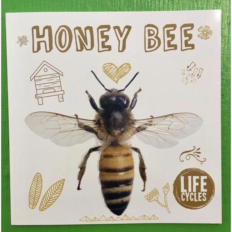 Honey Bee - Life Cycles