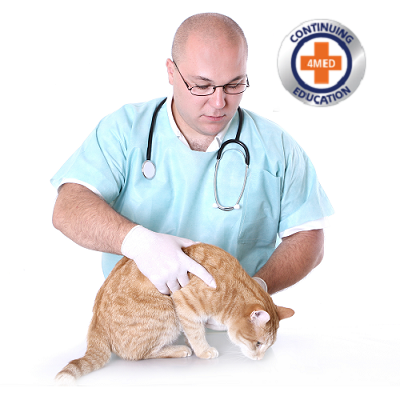 RECORDED WORKSHOP: Become a Certified Veterinary Compassionate Care Specialist