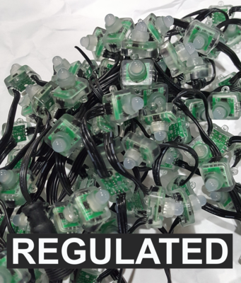 12V WS2811 REGULATED Square Pixels 100 Count Strings - SPECIAL ORDER