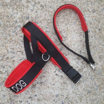 Straight Front Solid Color Padded Leather Harness