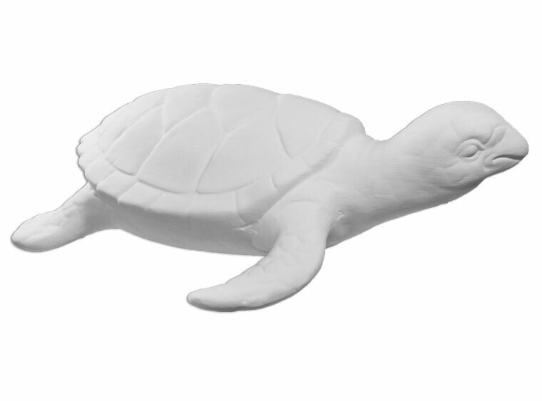 Tuck the Turtle