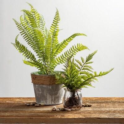 Jar - Fern Small