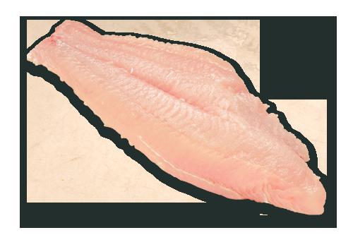 5-7 oz. Catfish Fillets, 5 lb. Carton