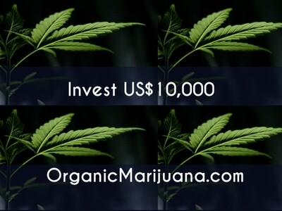 20,000 Shares in OrganicMarijuana.com