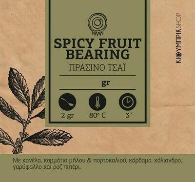 Πράσινο τσάι με μπαχαρικά & κομμάτια φρούτων | SPICY FRUIT BEARING