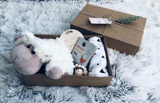 Newborn Boxes4