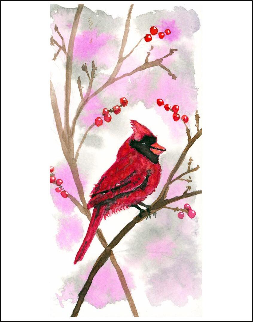 Cardinal With Berries - Blank - Single Card