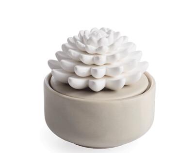 Succulant Porcelain Diffuser