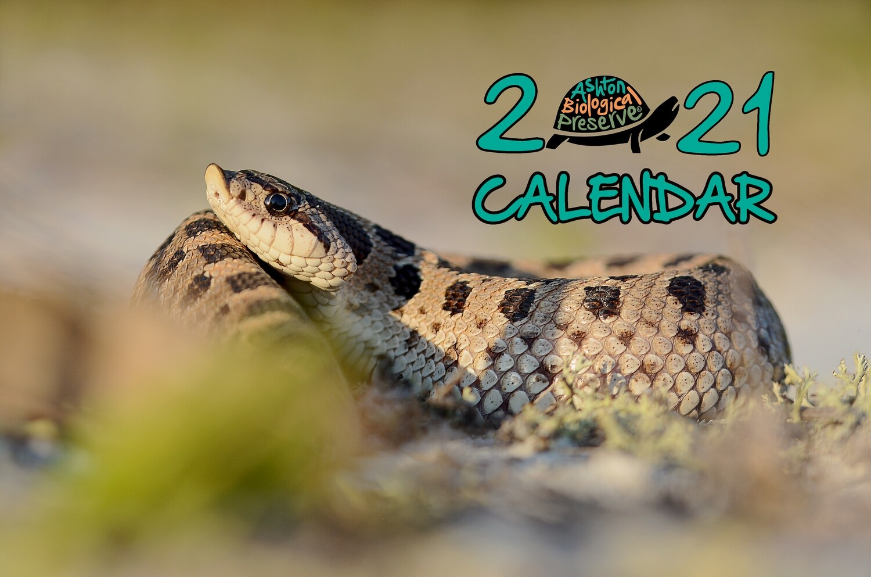 Ashton Biological Preserve 2021 Calendar