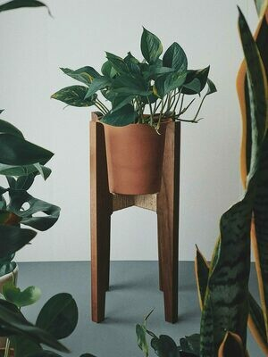 Midmod Plant Stand