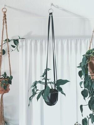 Modern Plant Hanger