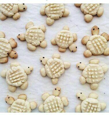 Wednesday, June 16: Sea Turtle Cookies