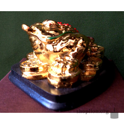 Талисман на удачу, заряженный энергетикой Верой Лион