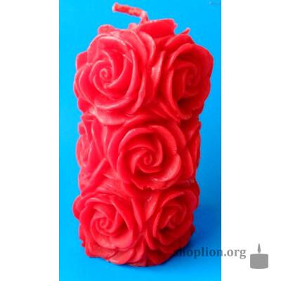 Большой розовый куст