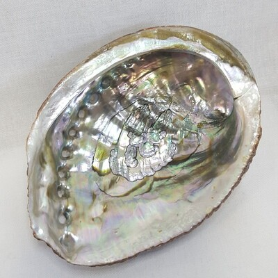 ABALONE SHELL BURNER