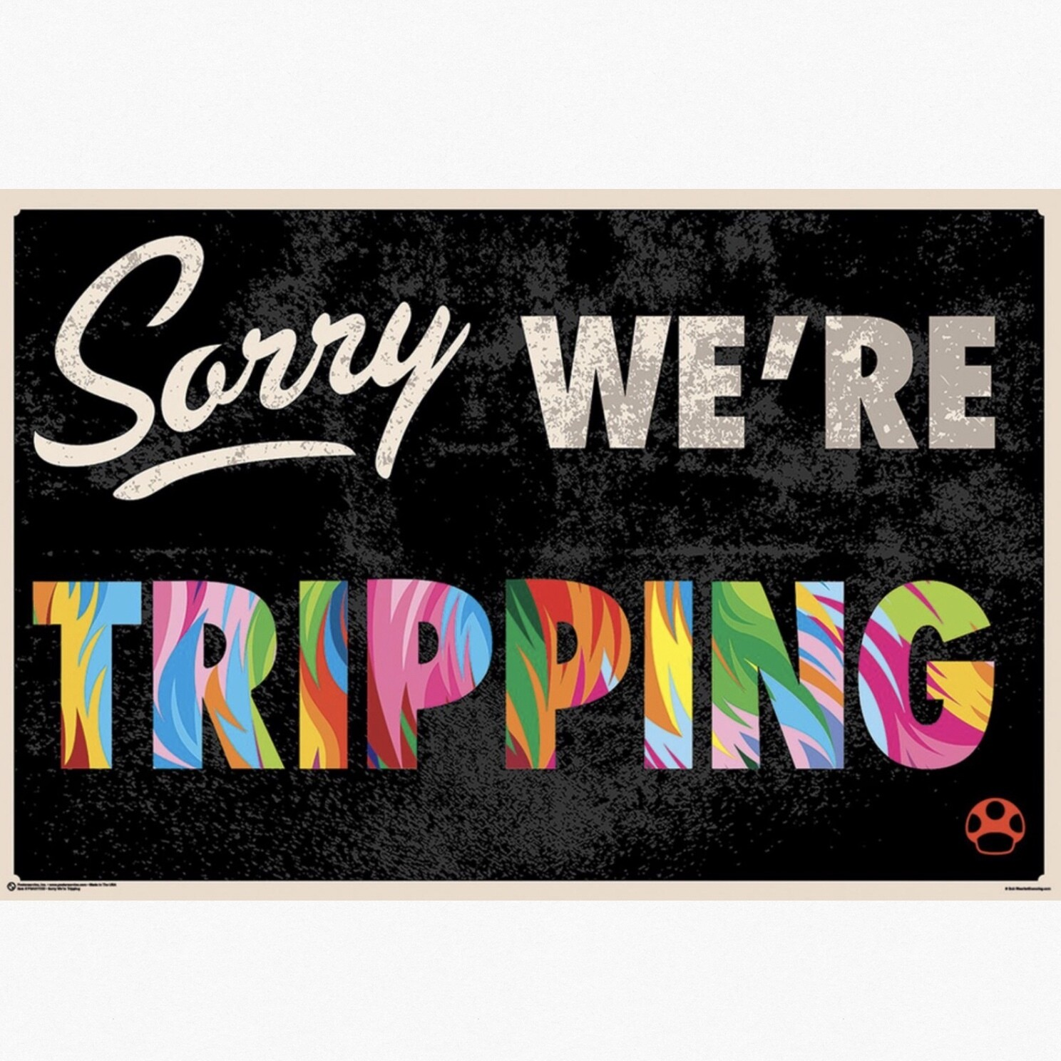 SORRY WE'RE TRIPPING POSTER