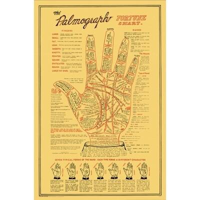 PALMOGRAPH POSTER