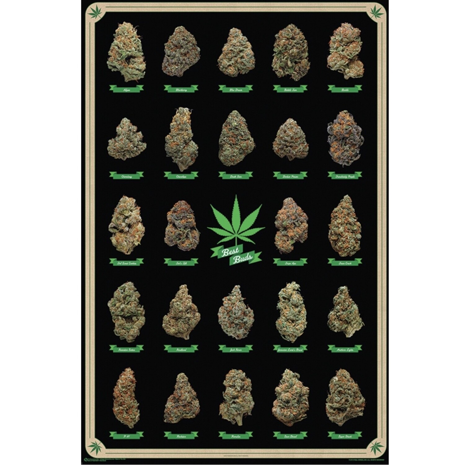 BEST BUDS POSTER