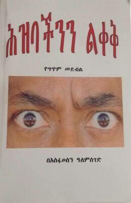 Leave our People Alone by Asfawesen Alemseged Book ሕዝባችንን ልቀቅ በአስፋወሰን ዓለምሰገድ