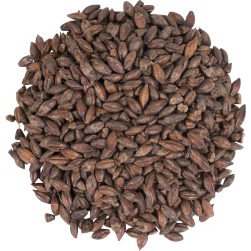 ቡናማ ቁሊት ገብስ አሻሮ Brown roast whole barley asharo 5lbs