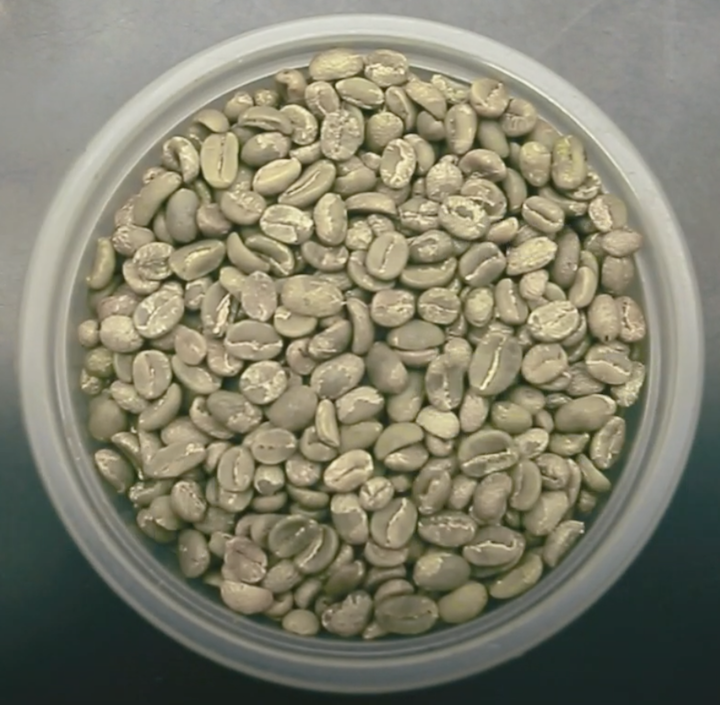 Buna Coffee bean