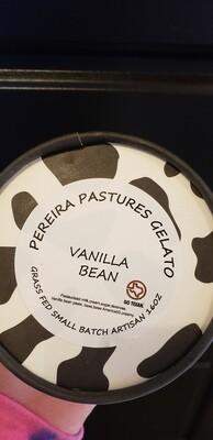 Gelato Pint (Vanilla)