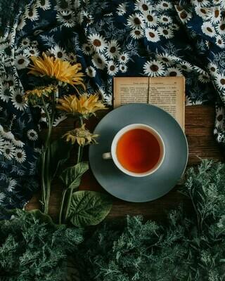 Steeped Tea (add Hot/Cold Tea Service)
