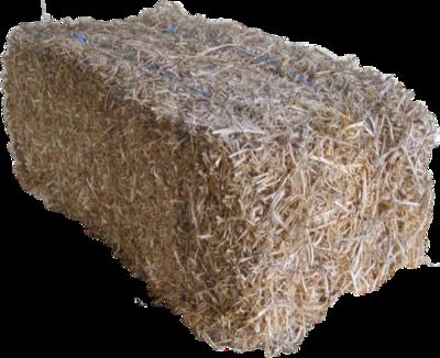 Pea Straw Bale