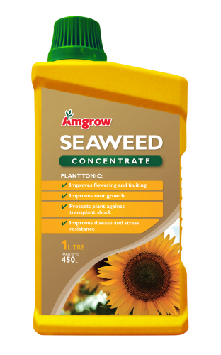 Seaweed Concentrate 500ML