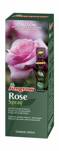 Rose Spray Concentrate 250ML