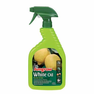 White Oil RTU 750ML