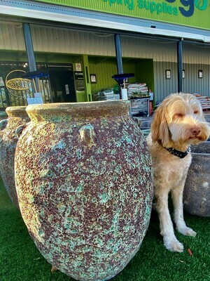 Tereno Urn Ceramic Pot 550h x 300w