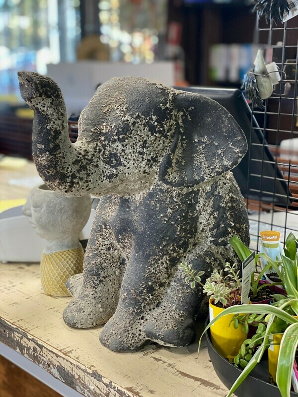 Lilly the baby elephant garden ornament.