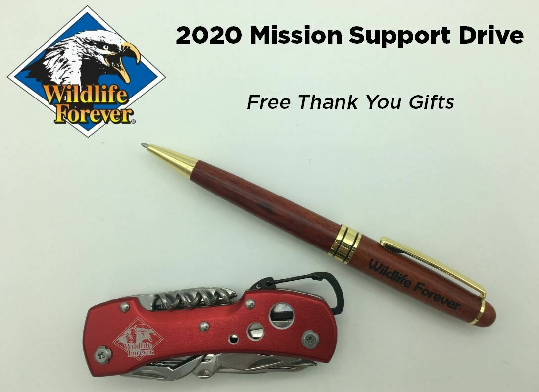 Mission Support Drive Donation