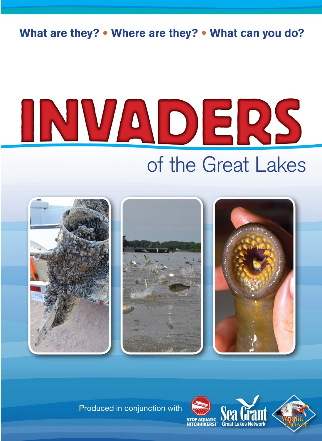 Invaders of the Great Lakes Book