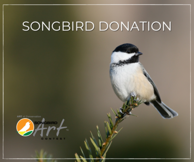 Songbird Donation
