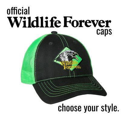 Wildlife Forever cap