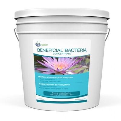 Aquascape Beneficial Bacteria Dry Concentrate For Ponds - 3.2 Kg / 7 lb