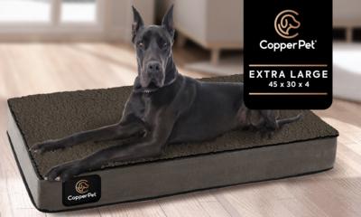 XL: Anti-Microbial Orthopedic Waterproof Dog Bed 45