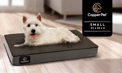S: Anti-Microbial Orthopedic Waterproof Dog Bed 25