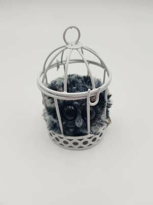 Caged art doll