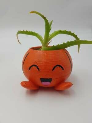 Pumpkin oddish