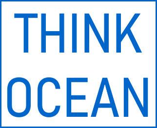 Think Ocean Store